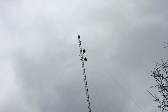 W231AK antenna, Great Barrington, MA