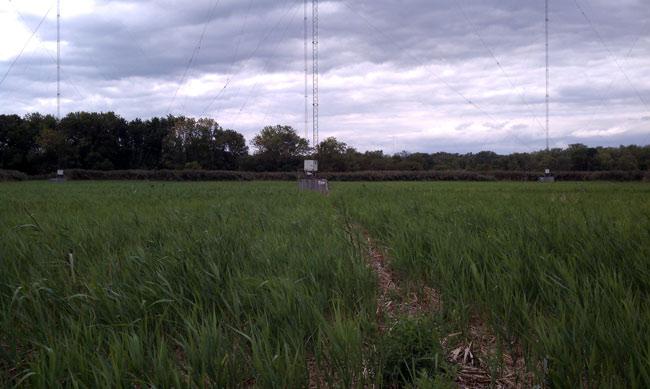 WGDJ directional antenna towers