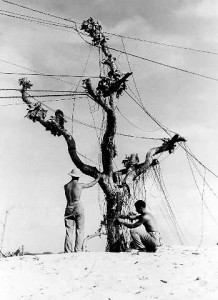 Communications men, US Navy WWII Pacific Theater